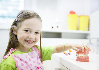 little girl holding tooth model with braces