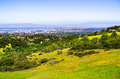 View towards Redwood City and Menlo Park; hills and valleys covered in green grass and wildflowers visible in the foreground, Silicon Valley, where Dr. Durando is located