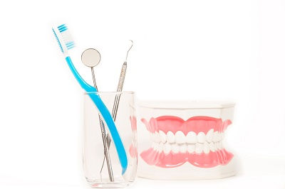 dental tool and toothbrush in a glass cup next to dental model on white background