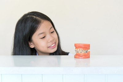young asian girl looking at model of human jaw