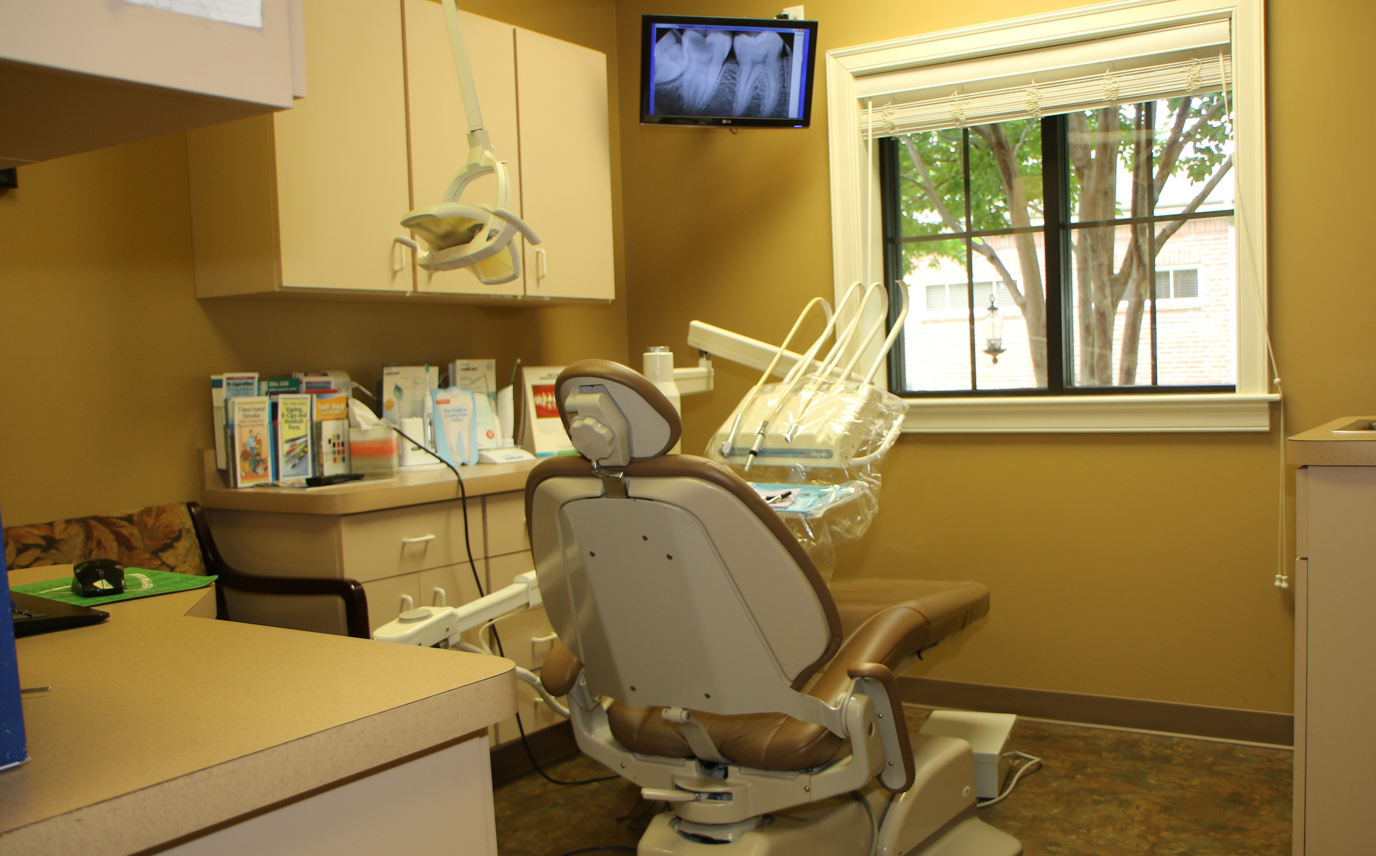 Picture of dental service chair & view | Conway Cosmetic Dentistry | Ladd Ellis, DDS